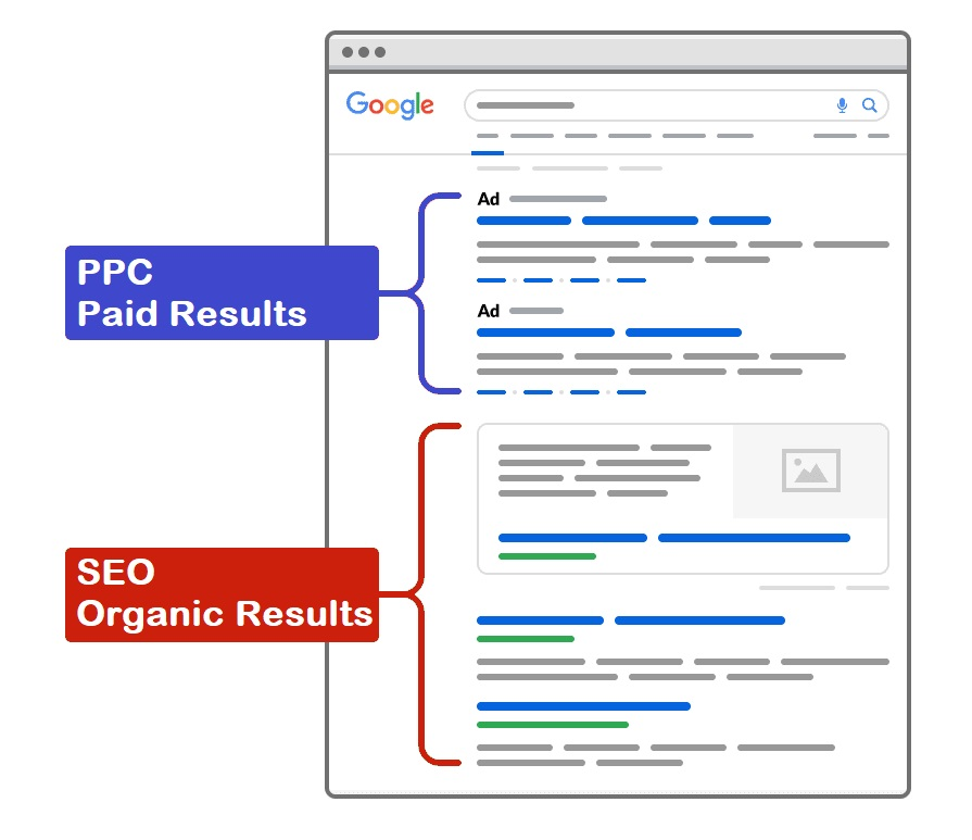 google paid results vs organic results